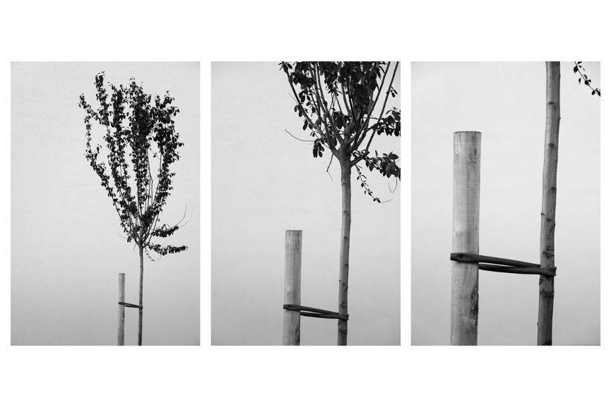 warsztaty-fotograficzne-017